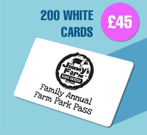 200 White Plastic Cards for £45